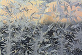 Frosty pattern — Foto de Stock
