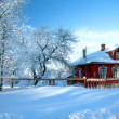 The house in snow — Stockfoto