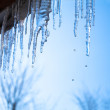 Icicles glint in the sun against the blue sky — Stock Photo #31114135