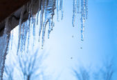 Icicles glint in the sun against the blue sky — Stock Photo
