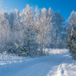Foto Stock: Winter landscape with the road