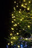 Christmas tree night with lights — Stock Photo