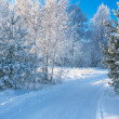 Winter landscape with the road — Foto de Stock