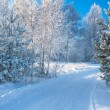 Winter landscape with the road — Foto Stock