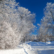 Winter landscape with the road — Stockfoto