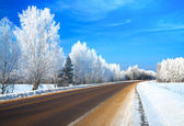 Winter landscape with the road — Stock Photo