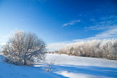 Winter rural landscape — Stock Photo