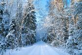 Зимний пейзаж с лесом и дорога — Стоковое фото