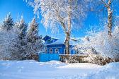 冬天乡村景观 — 图库照片