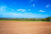 The opened field in the spring — Stock Photo