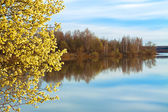 Spring landscape with a blossoming tree and the river — Foto de Stock