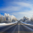 Winter landscape with the road the forest — Stock Photo