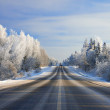 Winter landscape with the road the forest — Stock Photo #39544673