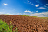 Opened field in the spring for crops — Stock Photo