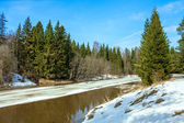 Spring landscape with the river and the wood — Stock Photo