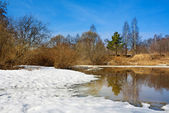 Spring landscape with the river and the forest — Foto Stock