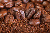 Background from the fried coffee grains — Stock Photo