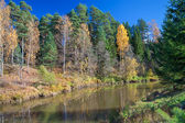 Autumn landscape with the river, the forest and the blue sky — Stock Photo