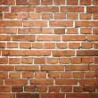 Grunge brick wall — Stock Photo #12487611