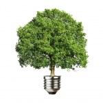 concetto di energia verde — Foto Stock #51514815