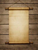 Blank paper scroll — Stock Photo