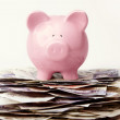 Savings — Stock Photo #5429031