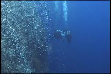 Diver underwater diving video bubbles — ストックビデオ