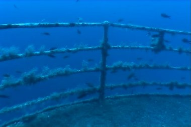 Malta underwater ship wreck diving — Stock Video