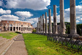 Vew of the Colosseum in Rome, Italy — Stock Photo
