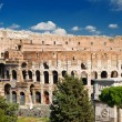 Colosseum in Rome, Italy — Stock Photo #14013511