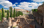 View of the Colosseum from the Palatine Hill, Rome — Stock Photo