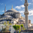 View of the Blue Mosque (Sultanahmet Camii) in Istanbul, Turkey — Stock Photo #26467899