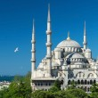View of the Blue Mosque in Istanbul, Turkey — Stock Photo #26783741