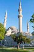 2013 年 5 月 25 日在土耳其伊斯坦布尔在苏莱曼清真寺 — 图库照片