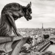 Chimera of the Cathedral of Notre Dame de Paris — Stock Photo #33515569