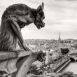 Chimera of the Cathedral of Notre Dame de Paris — Stock Photo