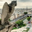Chimera of the Cathedral of Notre Dame de Paris overlooking the — Stock Photo