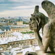 Chimera of the Cathedral of Notre Dame de Paris overlooking Pari — Stock Photo