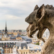 Stock Photo: Chimera (gargoyle) of the Cathedral of Notre Dame de Paris overl