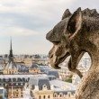 Chimera (gargoyle) of the Cathedral of Notre Dame de Paris overl — Stock Photo #34167919