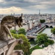 Chimera (gargoyle) of the Cathedral of Notre Dame de Paris overl — Stock Photo #34167937