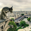 Chimera (gargoyle) of the Cathedral of Notre Dame de Paris overl — Stock Photo