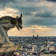 Chimera (gargoyle) of the Cathedral of Notre Dame de Paris overl — Lizenzfreies Foto