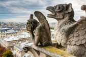 Chimeras of the Cathedral of Notre Dame de Paris overlooking Par — Stock Photo