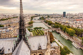 Paris view from tower of Notre Dame cathedral — Stock Photo