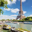View of the Eiffel tower from the river Seine. — Stock Photo #37449069
