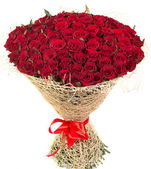 Big bouquet of red roses — Stock Photo