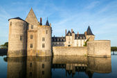 The chateau of Sully-sur-Loire, France — Stock Photo