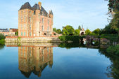 Castle on the lake in the Loire Valley in France — Foto Stock