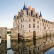 Stock Photo: Chateau de Chenonceau at sunset, France
